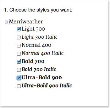 Choose google font styles